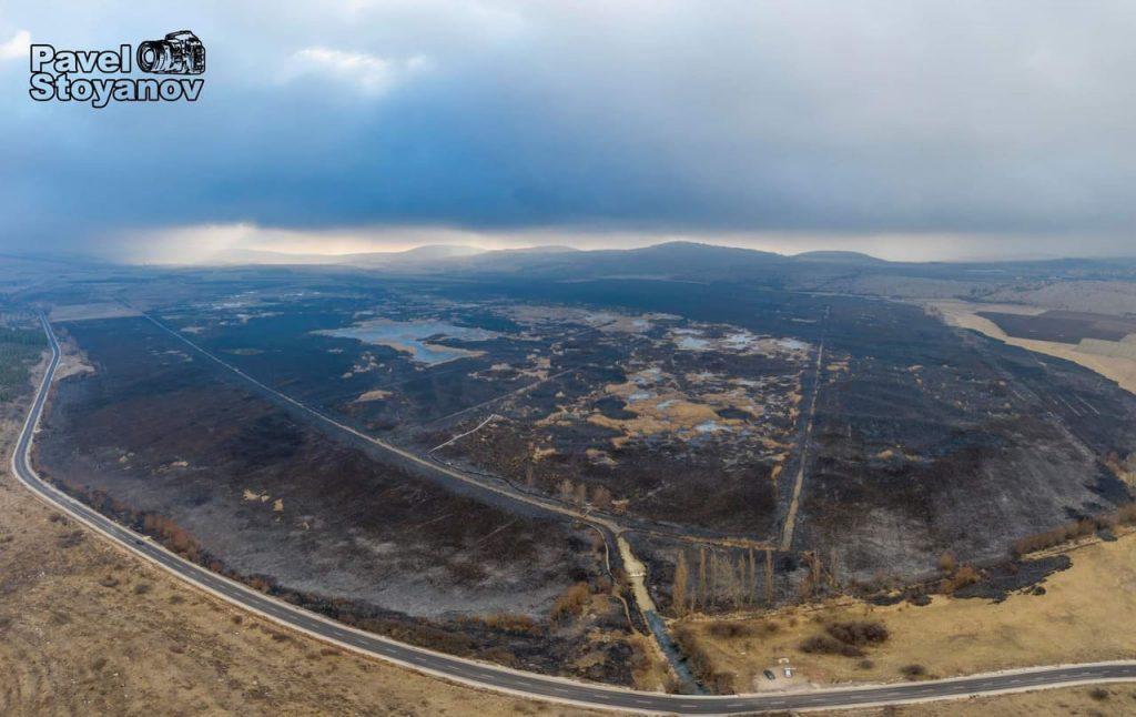 Драгоманското блато след пожара Снимка: Павел Стоянов
